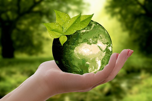 Green Earth - The Necessity For Continuation Of Life