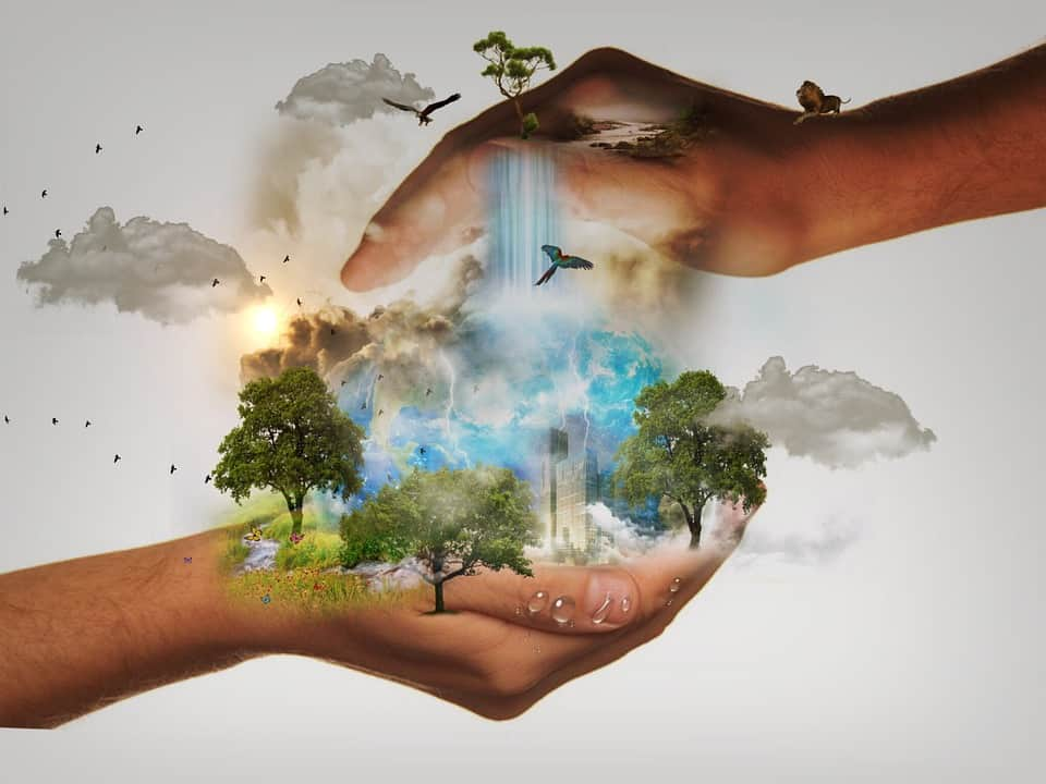 Environmental Protection: 5 Simple Ways To Save Our Environment
