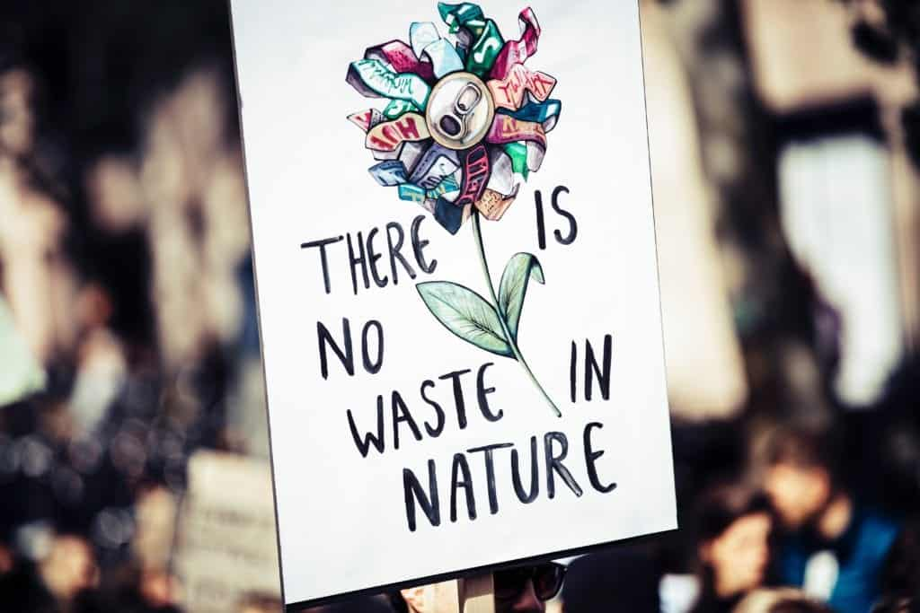 Spread The Awareness Of Studying Environmental Studies And Its Importance